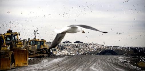 Tullytown Landfill